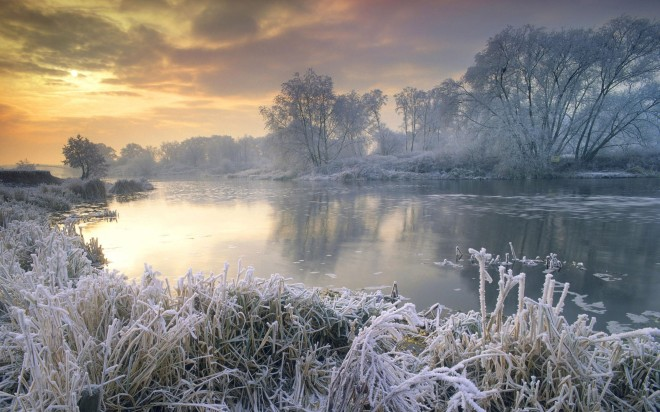 Winter scene with frost