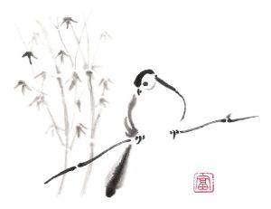 A solitary dove calls