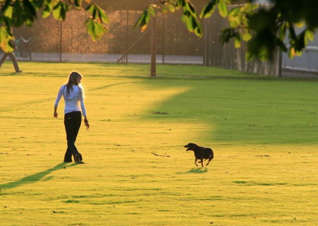 Blonde girl walks a black dog