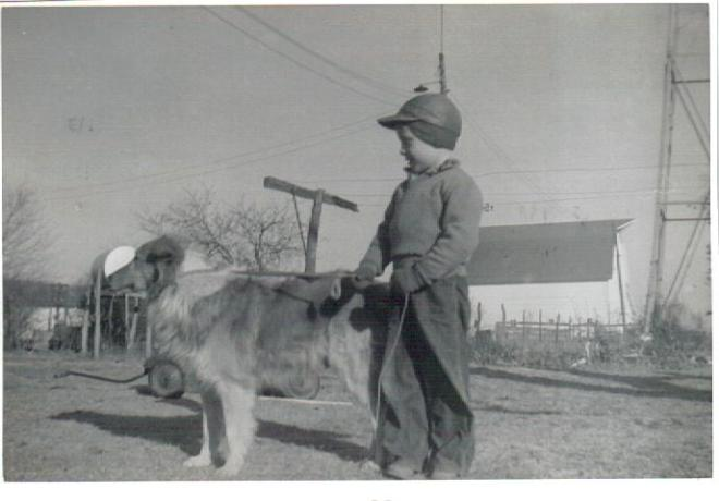 Farm boy leading a dog