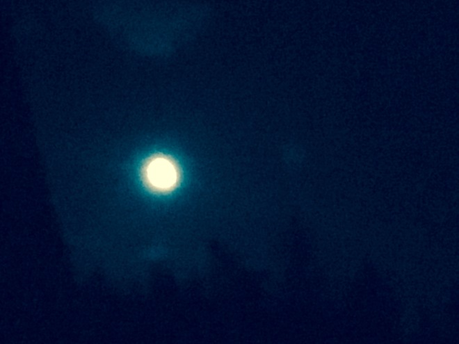 Late summer moon